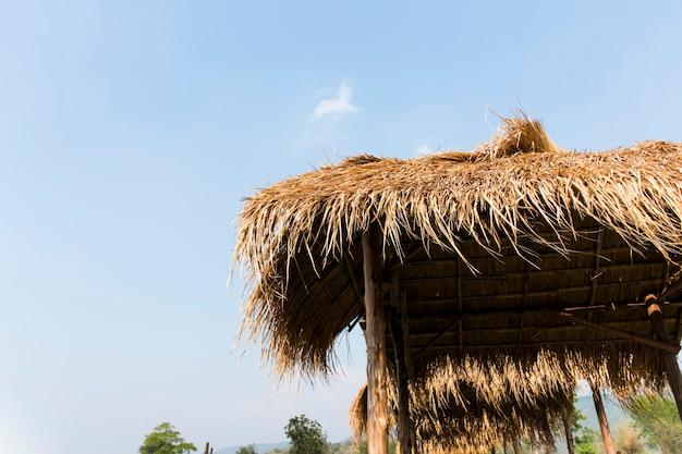 籐草で作られた屋根のある木造の小屋。