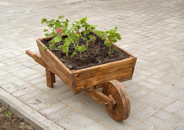 Деревянная тачка с колесом для посадки цветов машинка стоит на плитке и засажена