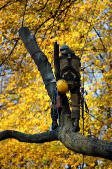 Рабочий с бензопилой рубит дерево