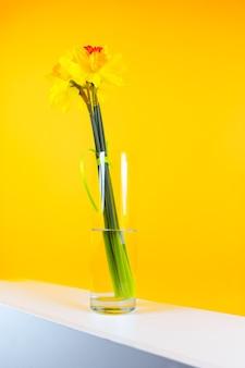 黄色い背景のテーブルの上に、ガラスの花瓶に入った水仙の花の黄色い花束が立つ