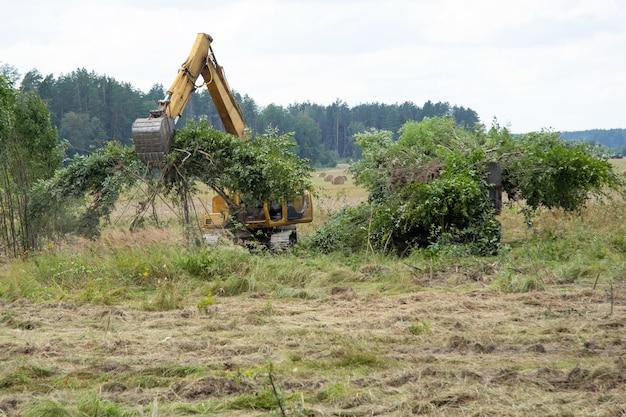 노란색 트랙터가 들판 근처에서 어린 나무가 자라는 지역을 끌어냅니다. 쟁기질을 위해 흙을 준비하고