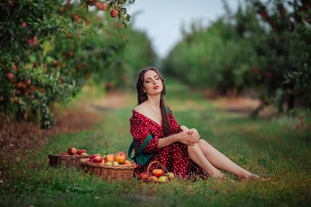 赤いエプロンの緑のドレスを着た若い魅力的な女性は、リンゴ園の枝編み細工品バスケットで熟したリンゴを選びます。