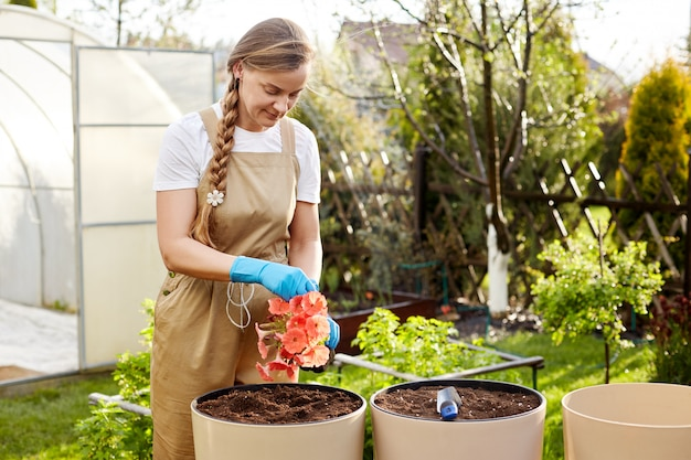 若い美しい女性庭師は、庭の大きなセラミック花瓶に花を移植します。