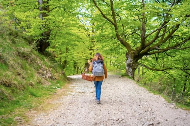그녀의 가족과 함께 피크닉으로 향하는 바구니와 함께 경로를 따라 걷는 젊은 백인 갈색 머리