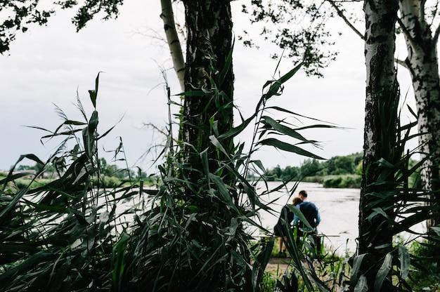 若いカップルが座って、キスをし、森と多くの木々の間で湖の近くを抱き締める