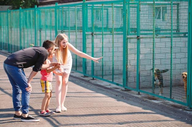 젊은 가족이 개 보호소에서 애완 동물을 찾고 있습니다.