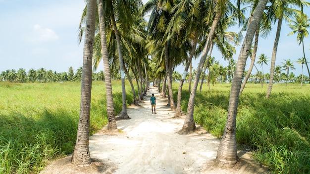 両側にヤシの木が砂浜の道の真ん中に立っている若い男