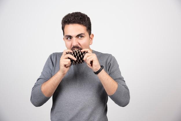 Молодой человек пытается укусить большую сосновую шишку.