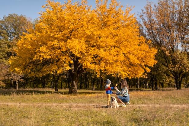 Молодая мама с ребенком и мопс на осенней прогулке в красочном парке