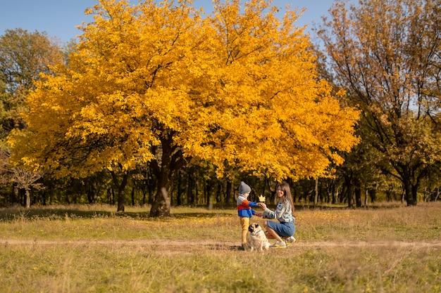 Молодая мама с ребенком и мопс на осенней прогулке в красочном парке.