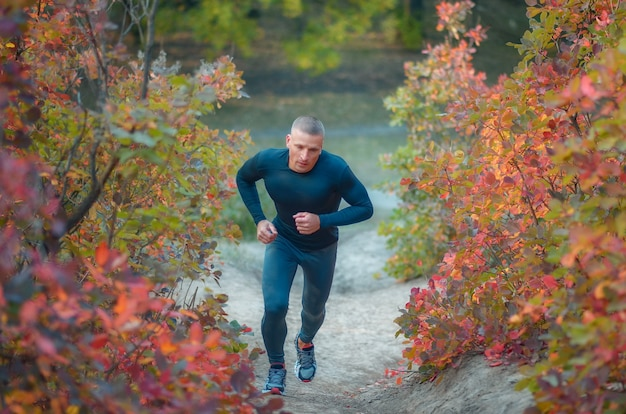 黒のレギンスとシャツを着た若い筋肉質のジョガーが、色とりどりの赤い秋の森の丘を走っています。