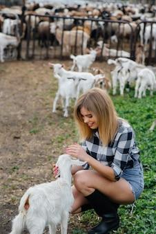 若いかわいい女の子は、ヤギや他の動物と一緒に牧場でポーズをとります。農業、家畜の繁殖。