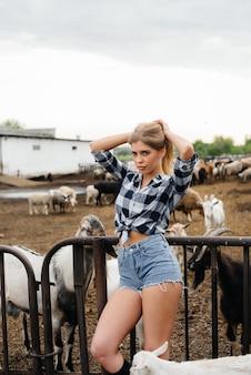 어린 예쁜 소녀가 염소와 다른 동물들과 함께 목장에서 포즈를 취합니다. 농업, 가축 사육.