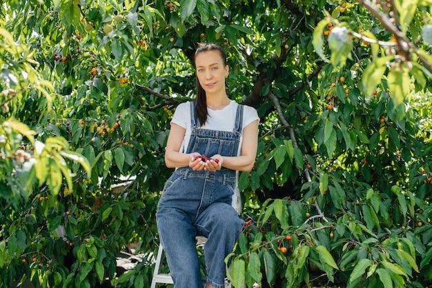 オーバーオールと脚立の若いきれいな女性は、夏の日に彼女の手に赤く、熟した、甘い桜を持っています。