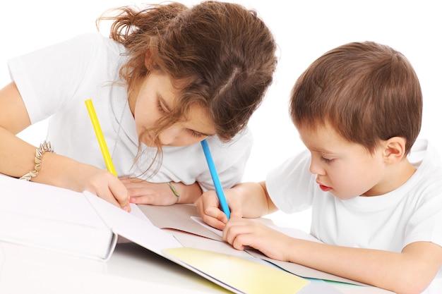 白い背景の上で宿題をしている若い兄弟