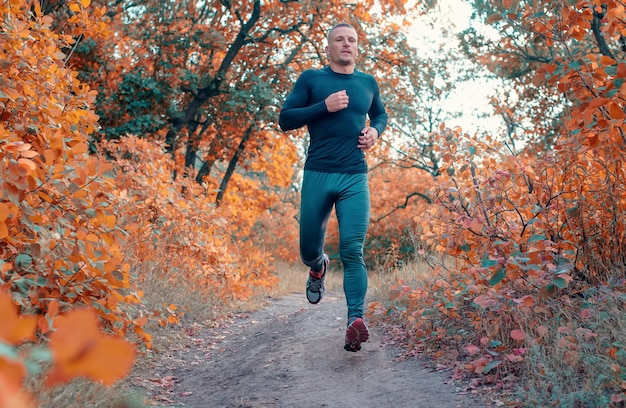 검은 스포츠 레깅스, 셔츠 및 운동화를 입은 젊은 강한 남자가 붉은 가을 숲에서 실행됩니다.