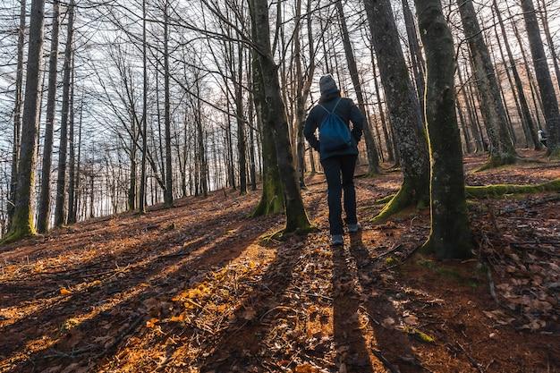 Молодая женщина на рассвете в лесу на горе аиако харрия, гипускоа. страна басков