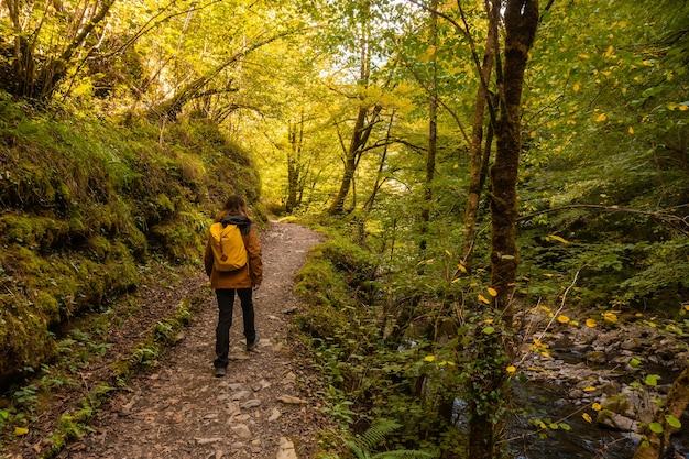 スペインのナバラ北部とフランスのピレネー・アトランティックスのイラティの森またはジャングルでパセレル・デ・ホルツァルテに向かう若い女性
