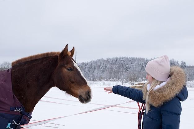 따뜻한 다운 재킷과 분홍색 모자를 입은 젊은 여성이 말에게 손을 뻗습니다.