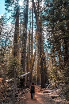 タフトポイントからヨセミテ国立公園のセンチネルドームまで美しい道を歩いている若い女性。アメリカ