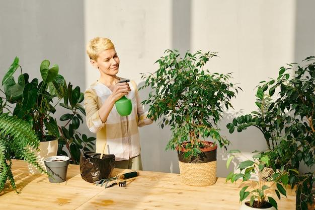 家庭環境で緑の国内植物の葉に水を噴霧する若い女性