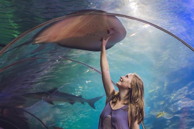若い女性が海洋水族館のトンネルでアカエイの魚に触れます。