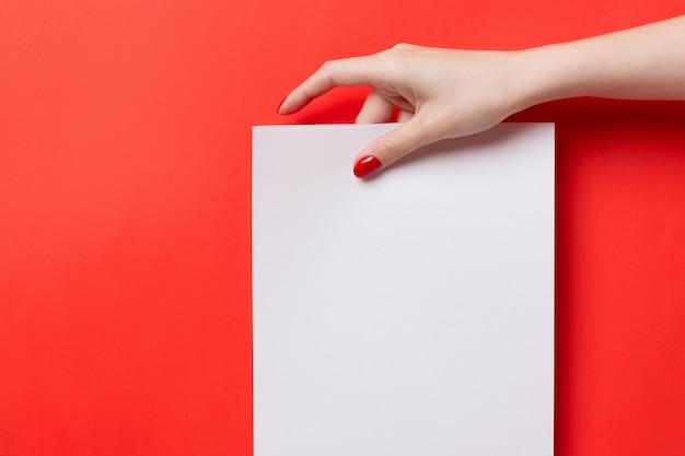 女性両手、白地に赤の背景に空白のa4紙