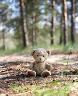 Abandoned brown teddy bear sitting in the middle of the forest