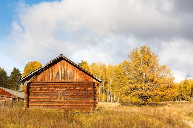가 숲에서 나무에서 버려진 된 집