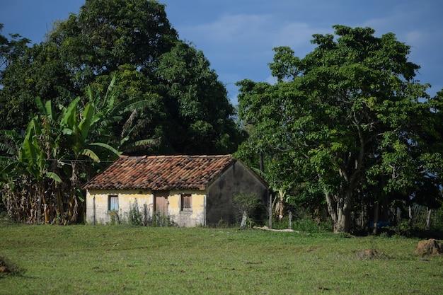 흐린 푸른 하늘이 있는 시골에 버려진 오래된 집