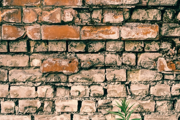 Abandoned old wall of ruined red and white bricks. background image, copy space
