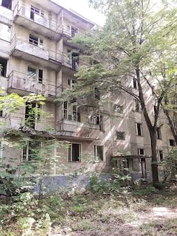 Заброшенное заросшее высотное здание с балконами, входной дверью и деревом