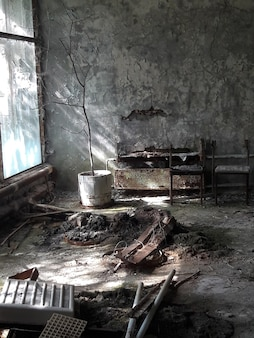 Abandoned room in a ruined building with rusty objects and a dead tree near the window