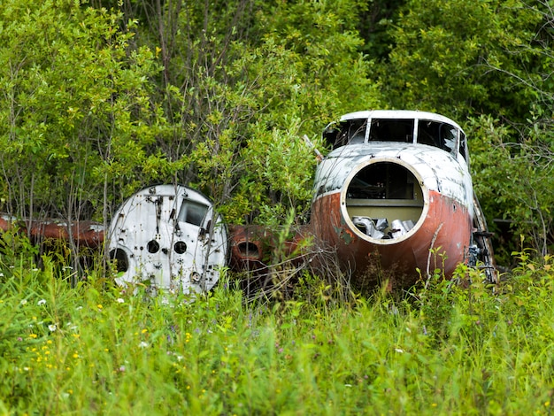 Abandoned seaplane in a forest, lake of the woods, ontario, canada