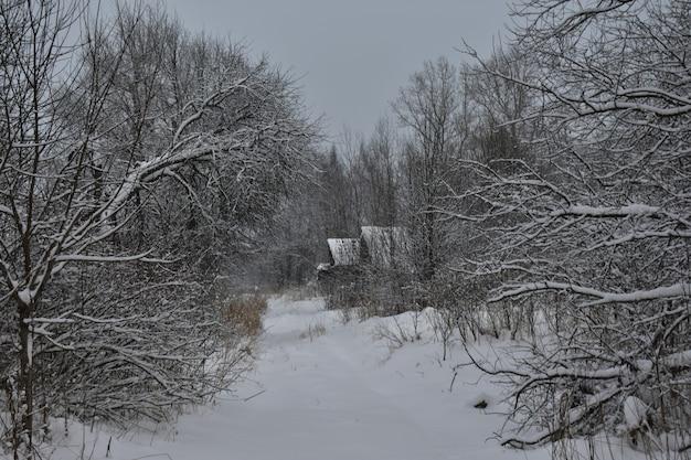 Заброшенная деревня в снегу зимой