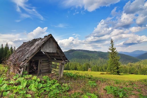 Покинутый деревянный амбар в горах и лесе. в карпатах.