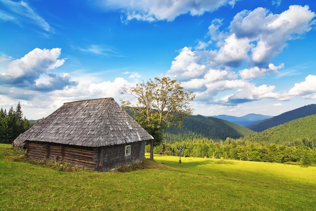 Заброшенный деревянный дом в горах и лесу. в карпатах.