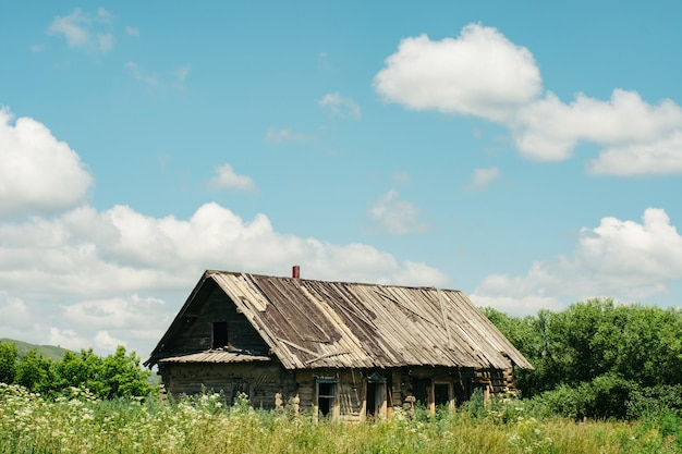 Abandoned wooden house in the middle of the overgrown area. village.