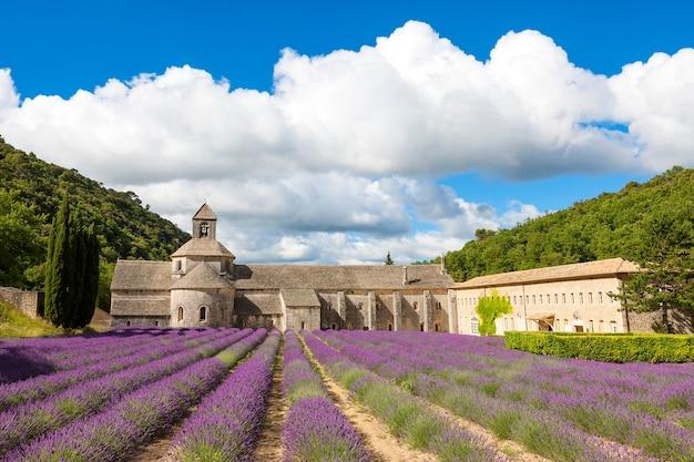 Аббатство сенанк и цветущие ряды цветов лаванды. горд, люберон, воклюз, прованс, франция, европа.
