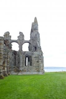 Abbey ruins  ruins
