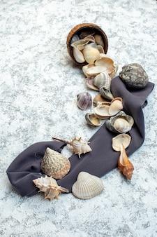 Вид сверху различные ракушки с камнями на белом фоне цвет раковины столовые приборы вода океан дизайн