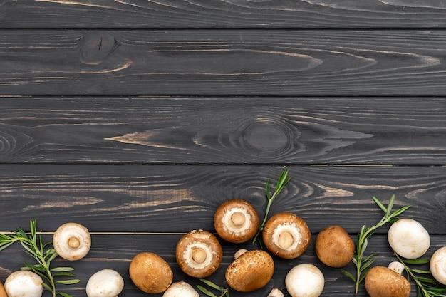 Выше вид грибной рамы