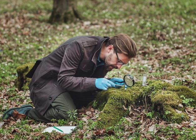 ピンセットと拡大鏡を使用してコケのサンプルを収集および調査するゴム手袋に吸収された植物学者