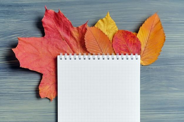 コピースペースのためのノートと乾燥した葉の抽象的な秋のコンセプト