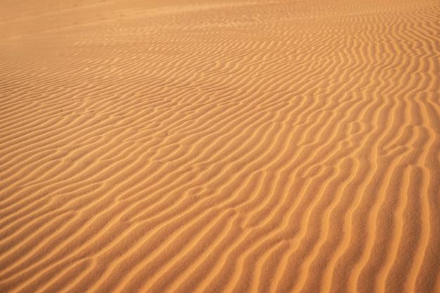 抽象的な背景と砂漠の砂の波のテクスチャ
