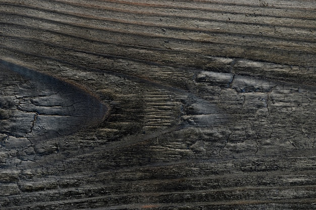 Abstract background of burnt wooden board. closeup topview for artworks. high quality photo
