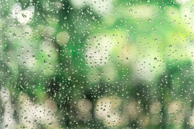 Abstract background from raindrop on glasses window with blurred green tree background.