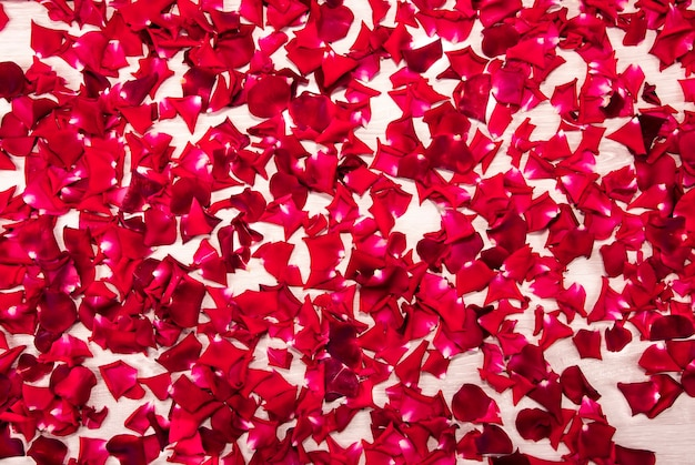 Abstract background from scattered red rose petals on a white wooden table
