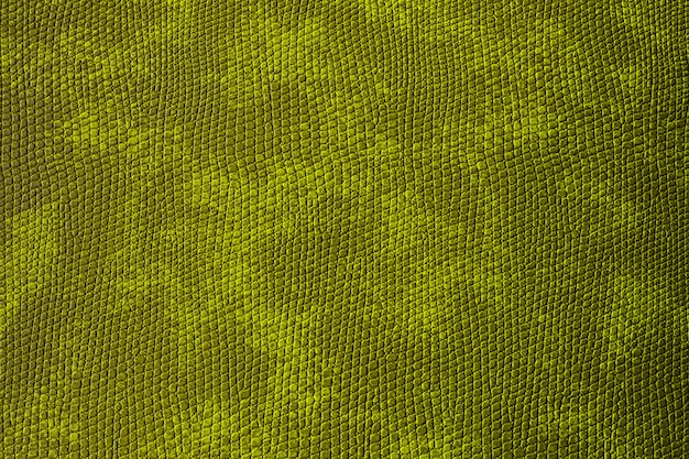 Abstract background. green spotted material