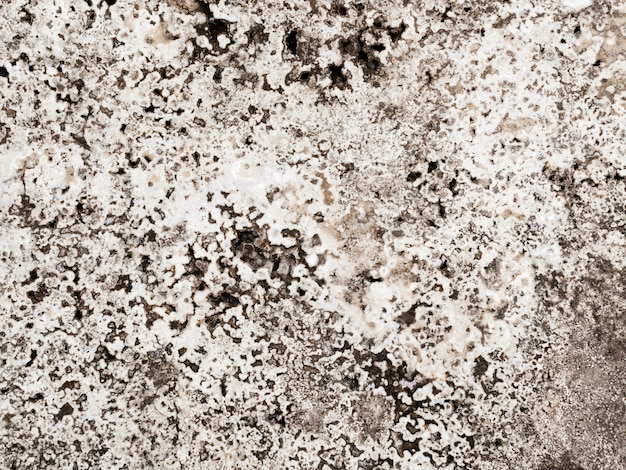 Abstract background of marble textured
